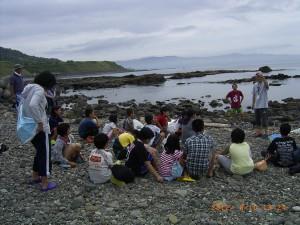 海の生物(板谷)